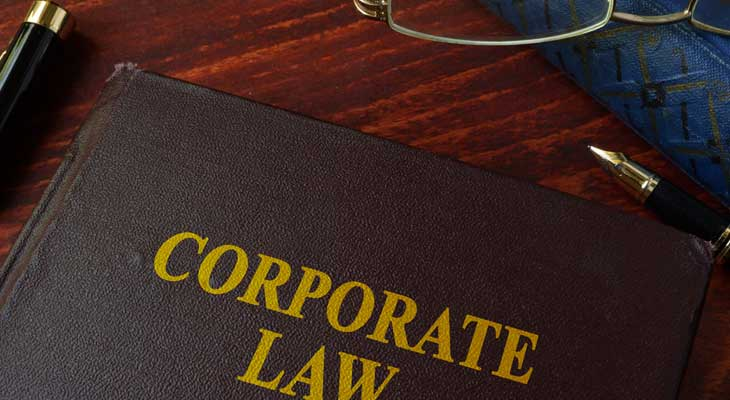 Director and Officer Liability Litigation